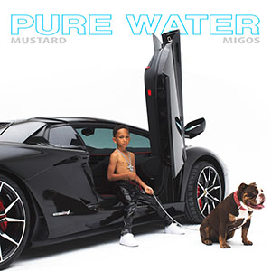 Pure Water - Artwork